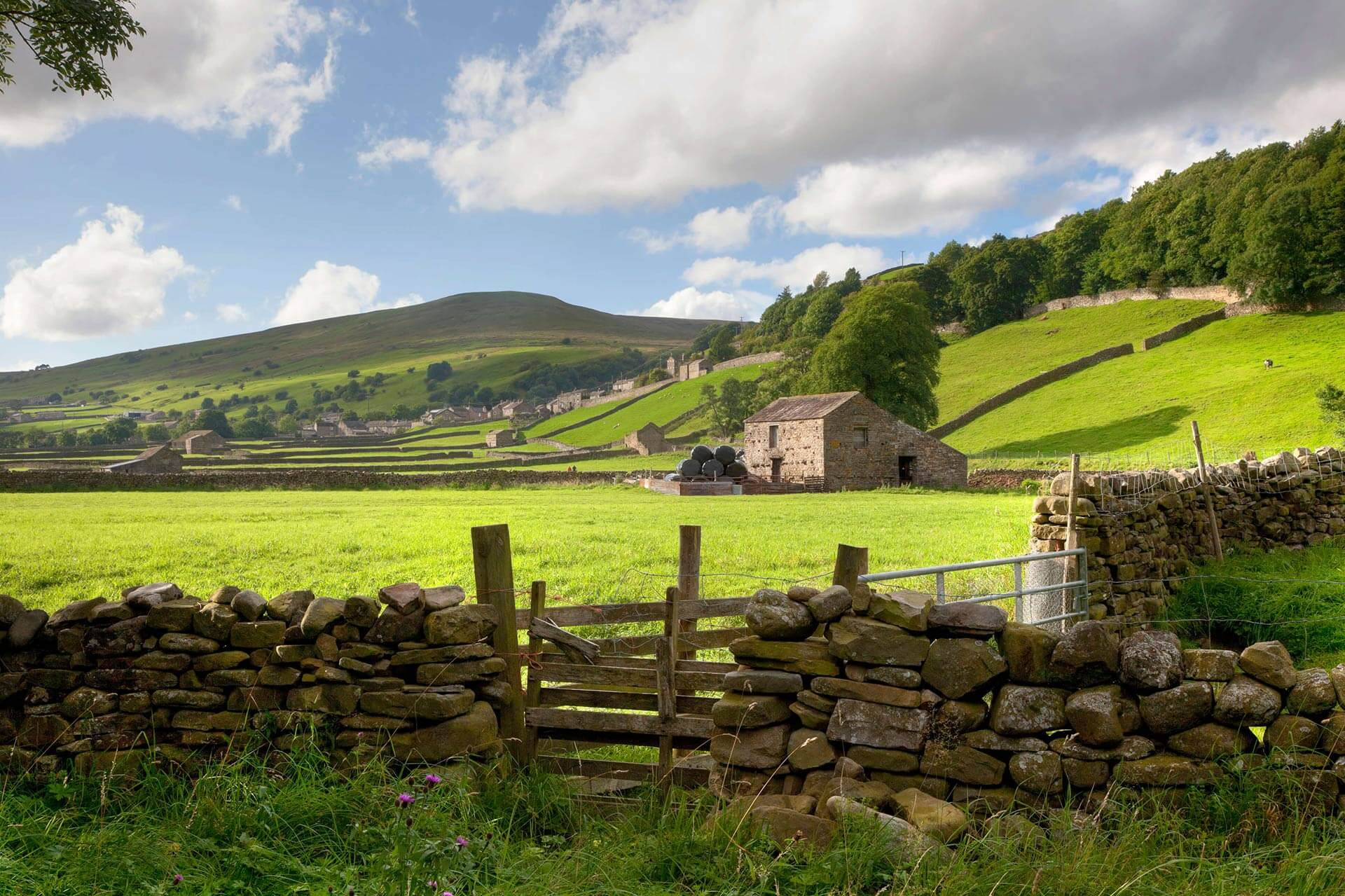 4 Reasons to Love the Yorkshire Dales in Spring - Mill ... Stephen Paddock