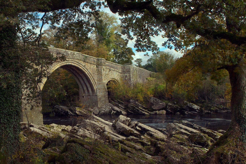 devils bridge at kirkby lonsdale framed by trees